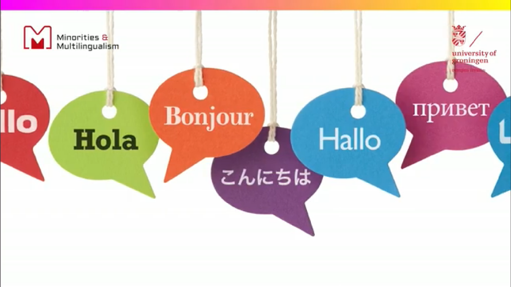 Multilingual Practices